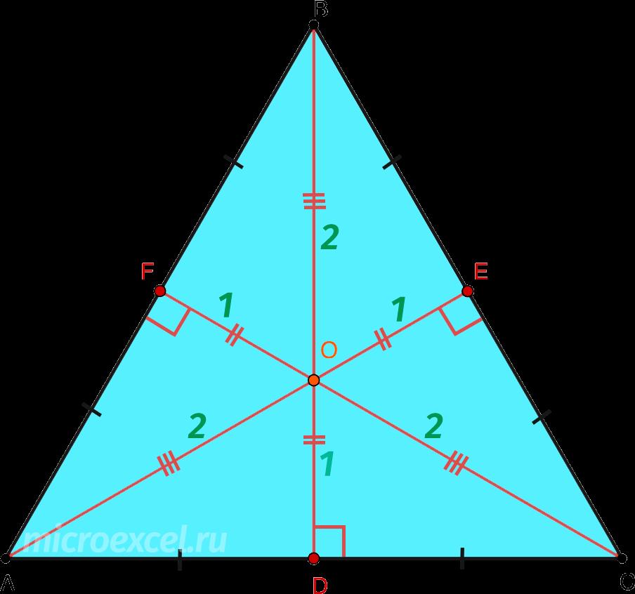 Деление высот в равностороннем треугольнике в точке пересечения (ортоцентре)